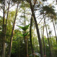 Grimpe encadrée et bivouacs dans les arbres en Dordogne - Périgord, pour particuliers, collectivités et centre de loisirs. Tentsile France