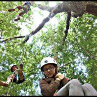 Grimpe encadrée et bivouacs dans les arbres en Dordogne - Périgord, pour particuliers, collectivités et centre de loisirs.